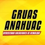 GRUAS ANAHUAC